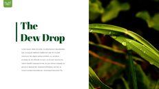 Dew Drop PowerPoint Templates Design_17