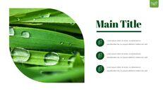 Dew Drop PowerPoint Templates Design_20
