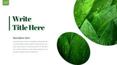 Dew Drop PowerPoint Templates Design_21