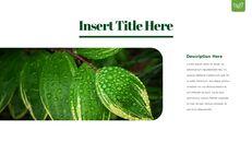 Dew Drop PowerPoint Templates Design_22