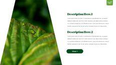 Dew Drop PowerPoint Templates Design_24