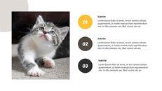 Tiny Kitten PowerPoint Business Templates_14
