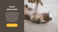 Tiny Kitten PowerPoint Business Templates_15