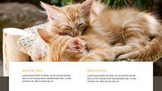 Tiny Kitten PowerPoint Business Templates_17