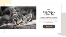Tiny Kitten PowerPoint Business Templates_21