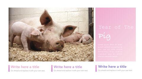 돼지의 해 심플한 키노트 템플릿_03