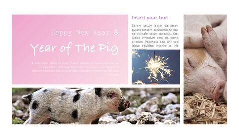 돼지의 해 심플한 키노트 템플릿_08