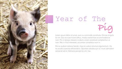 돼지의 해 심플한 키노트 템플릿_11