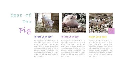 돼지의 해 심플한 키노트 템플릿_18
