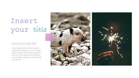돼지의 해 심플한 키노트 템플릿_20