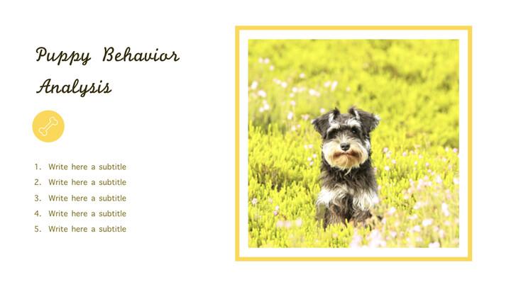강아지 행동 분석 키노트 디자인_02