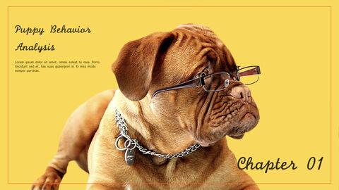 강아지 행동 분석 키노트 디자인_03