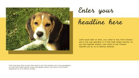 강아지 행동 분석 키노트 디자인_05