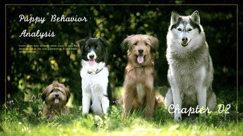 강아지 행동 분석 키노트 디자인_09