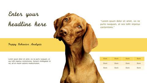 강아지 행동 분석 키노트 디자인_18