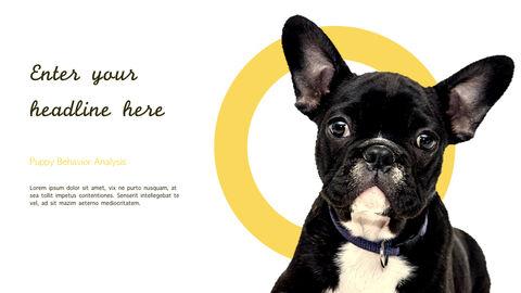 강아지 행동 분석 키노트 디자인_04