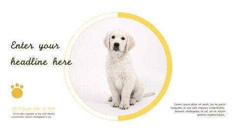 강아지 행동 분석 키노트 디자인_23