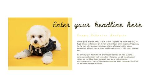 강아지 행동 분석 키노트 디자인_28