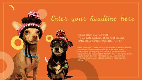 강아지 행동 분석 키노트 디자인_31