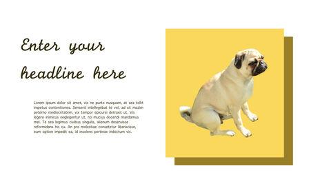 강아지 행동 분석 키노트 디자인_32