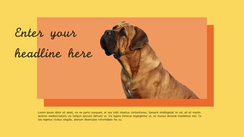 강아지 행동 분석 키노트 디자인_33