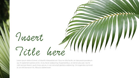 Botanical Simple Keynote Template_06