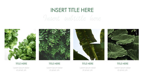 Botanical Simple Keynote Template_24