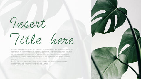 Botanical Simple Keynote Template_32