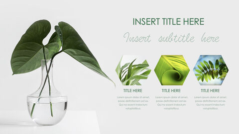 Botanical Simple Keynote Template_36