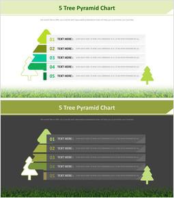 5 나무 피라미드 차트 다이어그램_00