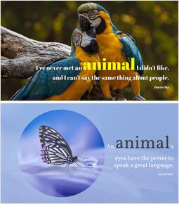 Animal - PPT Slides_00