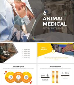 Animal Medical Slide Presentation_00