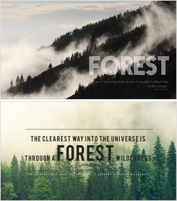 Forest_00