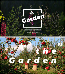 Garden_00