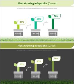 식물 성장 Infographic 다이어그램 (녹색)_00