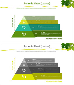 피라미드 차트 (잎)_00