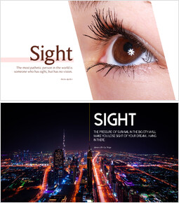 Sight_6 slides