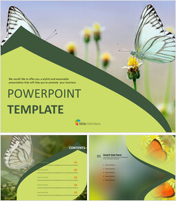 Butterfly Theme - PowerPoint Template Free Download_00