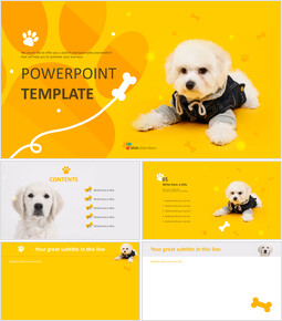 Dog Clothes - Free Presentation Template_00