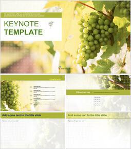 녹색 포도 농장 - 무료 Keynote 템플릿_00