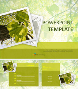 Green Leaves - Free PPT Presentations_00