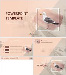 Google Slides Download Free - Seagull_00