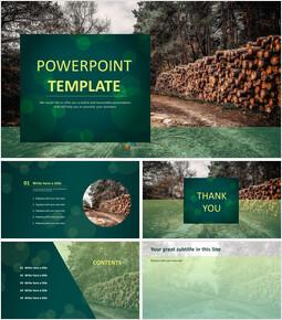 목재 캠프 - 무료 Google 슬라이드 템플릿 디자인_00
