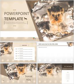 Yorkshire Terrier - Free Images for Google Slides_6 slides