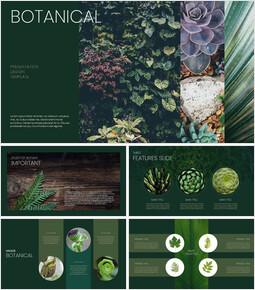 식물 Google 파워포인트 슬라이드_00