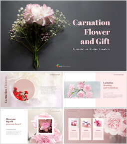 Carnation Flower and Gift PPT Templates Design_40 slides