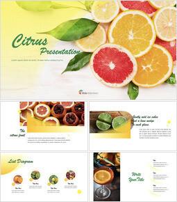 Citrus Keynote Examples_40 slides
