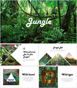 Jungle Action plan PPT_00