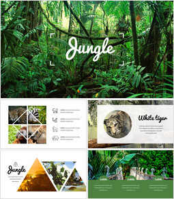 Jungle Simple Google Slides Templates_00