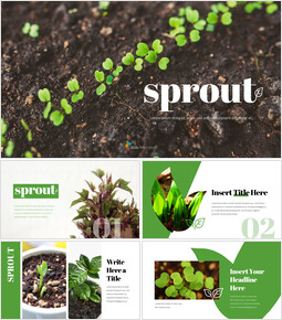 Organic Sprout PowerPoint Presentation Templates_00